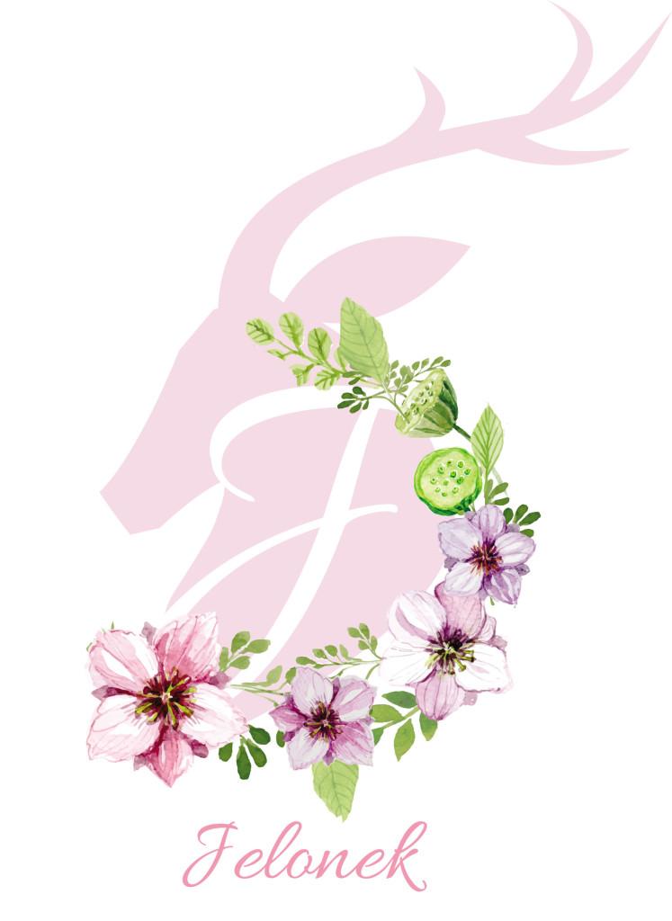 Kwiaty Jelonka