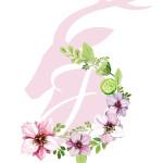 Jelonek Logo
