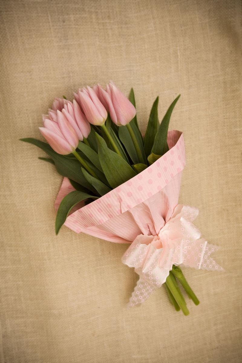 Tulipany Bukiet Kwiaty Jelonka